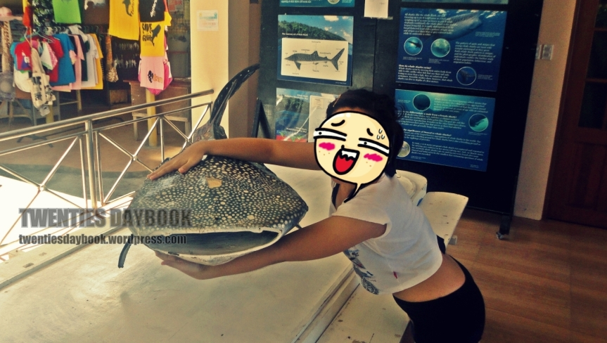 BICOL Summer Spree: DAY 2 – Whale SharkInteraction