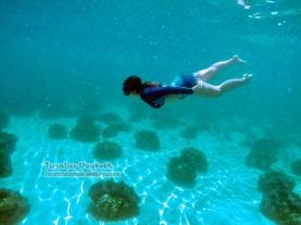 Samal, Davao: giant clams <3
