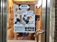 Entrance to Cafe de Kitten, Mong Kok