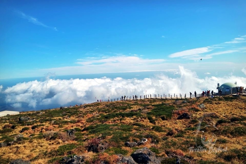 Solo Hiking at Hallasan: South Korea's Tallest Peak and Jeju's Centerpiece